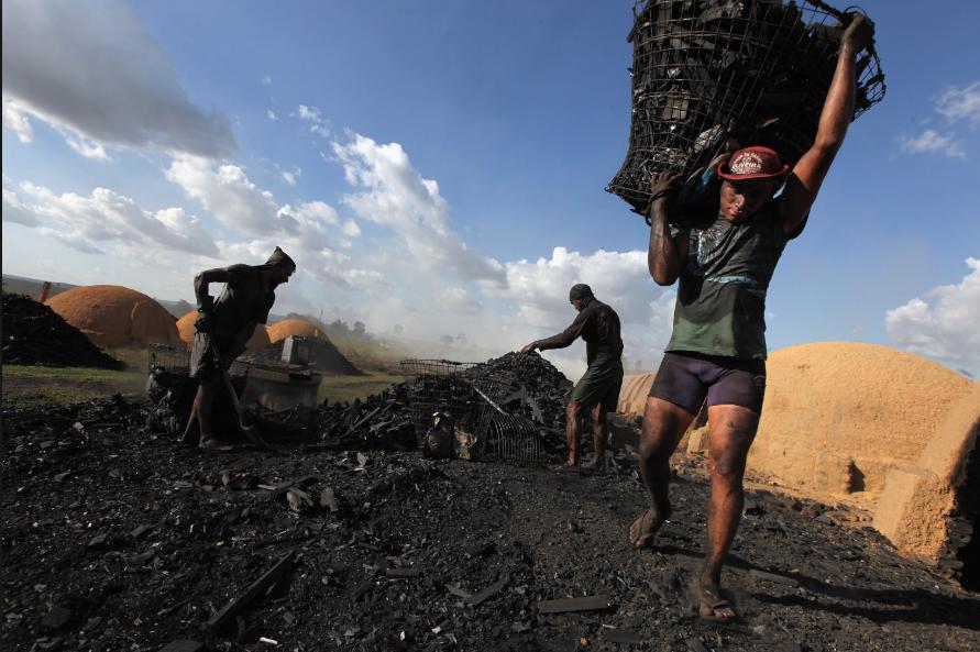 Trabalho escravo no Brasil: uma triste realidade!